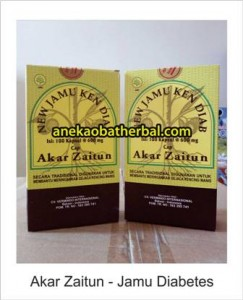 akar_zaitun_jamu_diabetes