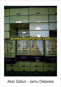 akar_zaitun_jamu_diabetes_distributor