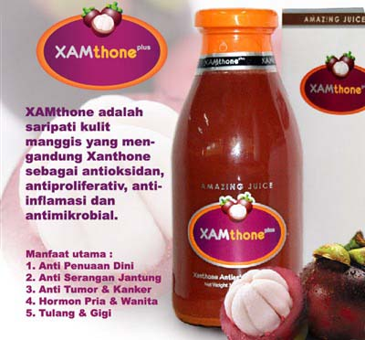 Khasiat Xamthone Plus