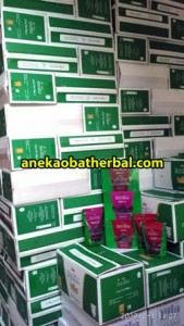 kurma_date_crown_distributor